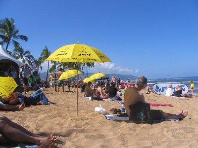 surfing2007e.jpg