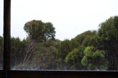 rain_rain_rain.jpg