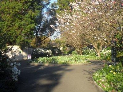 spring_walk.jpg