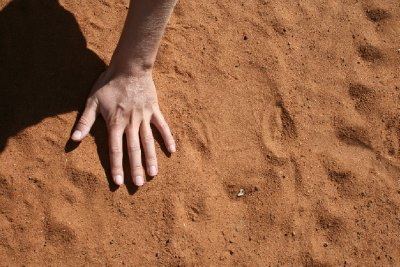 Hand next to a baby rhino track
