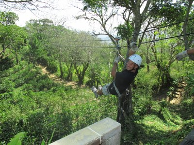 Andrew zip-lining over the coffee plantation