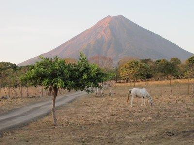 A view of Volcán Concepción