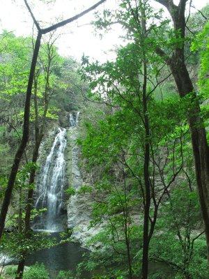 The large waterfalls of Montezuma