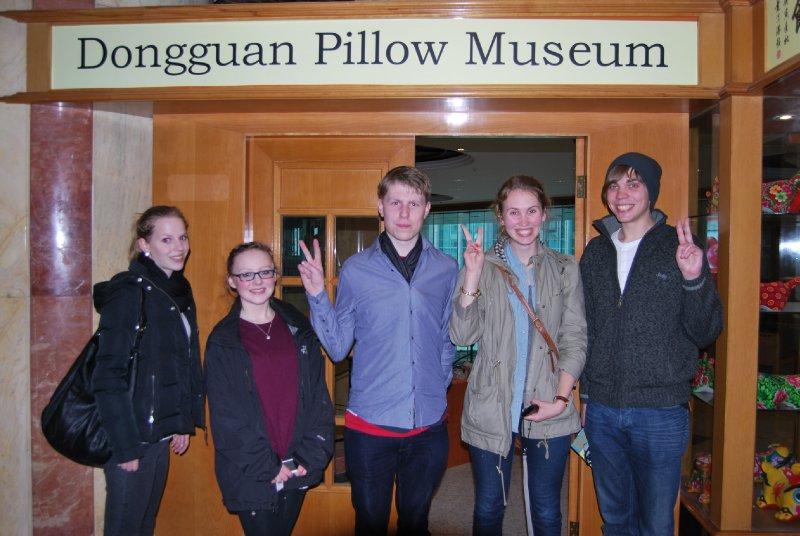 Pillow Museum