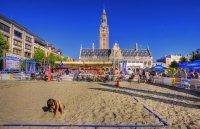 ladeuze square beach volley