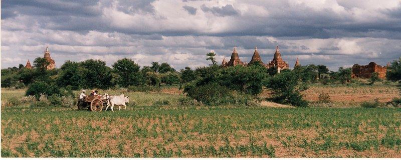 Bagan countryside