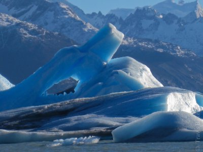 Icebergs from Glaciar Upsala