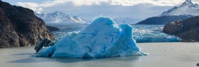 Glacial Ice in front of Glacier Grey