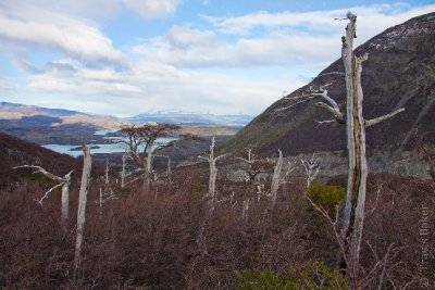 View down Valle de Frances