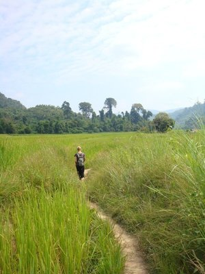 Kate in the paddy fields