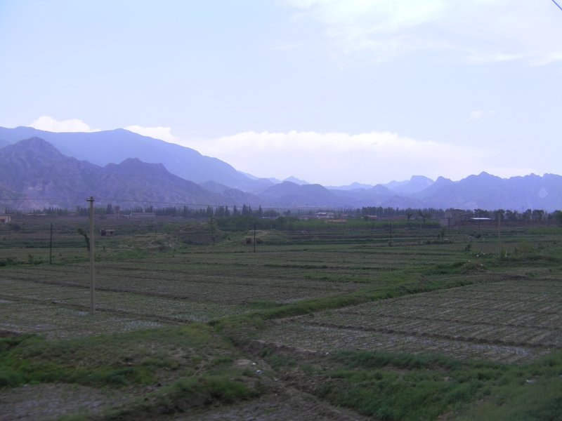 Chinese Fields