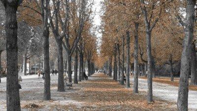 110927_Paris5.jpg