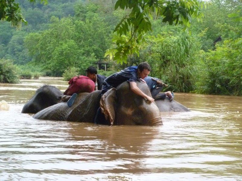 large_1_kyle_bath_elephant.jpg