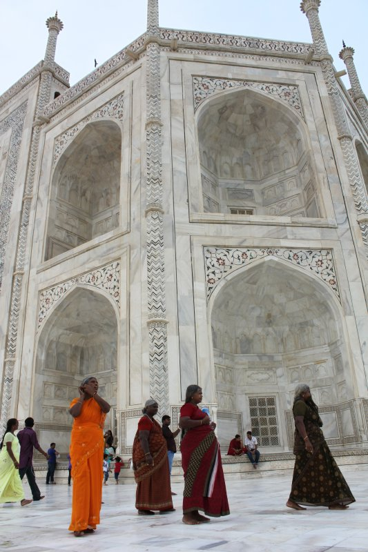 large_20_1_saris_n_taj.jpg