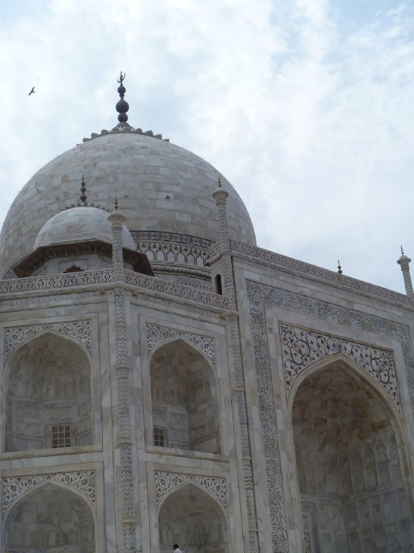 large_22_taj_dome_below.jpg