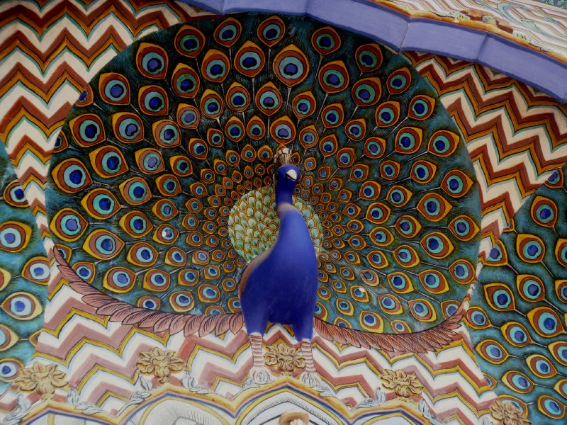 large_32_peacock_detail.jpg