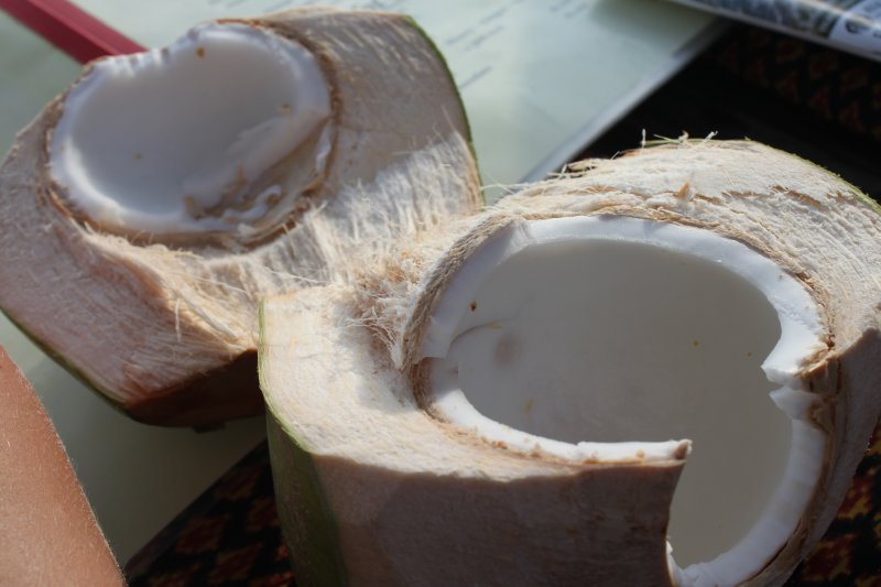 large_coconut.jpg
