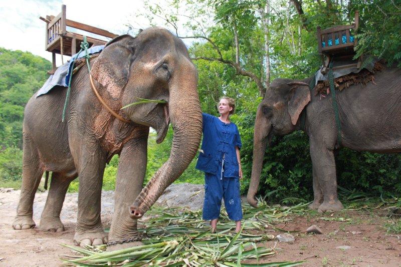 large_kirby_elephant_lunch.jpg