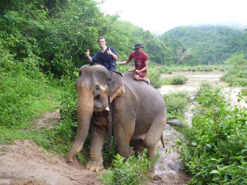 large_kyle_elephant_bath.jpg