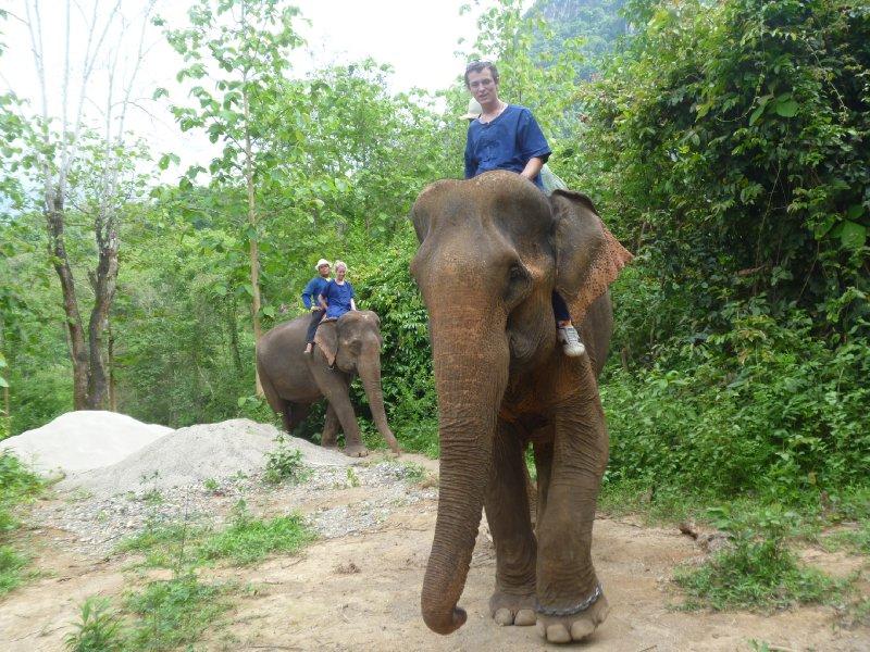 large_kyle_kirby.._jungle.jpg
