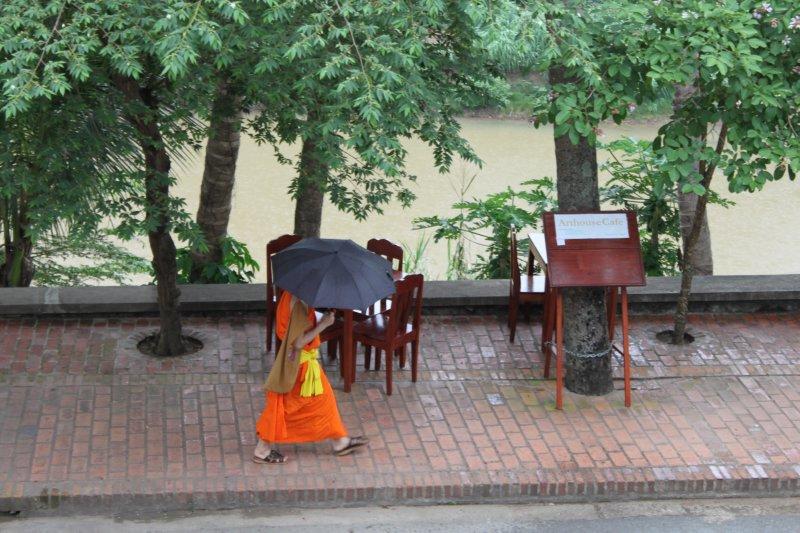large_monk_in_rain.jpg