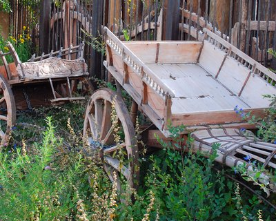 Old Cattle Carts