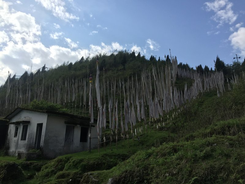 Sikkim_2017-06-05 15.33.06