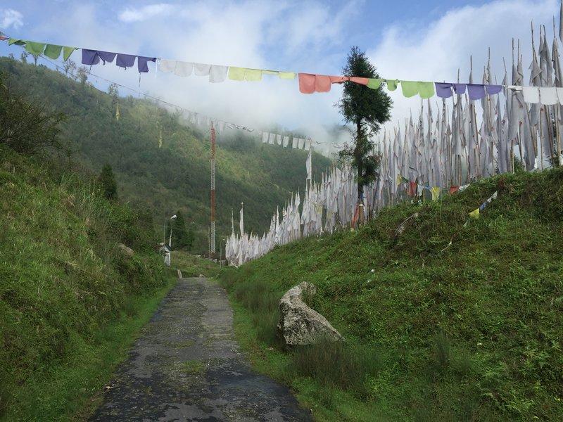 Sikkim_2017-06-05 15.34.16