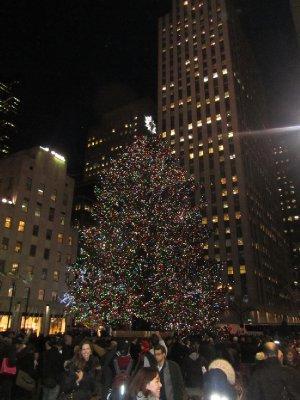 New York - Rockefeller Tree