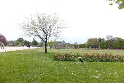 Tuileries_Garden.jpg