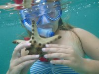 Catching_Star_Fish.jpg