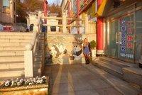 pandas_in_chinatown.jpg
