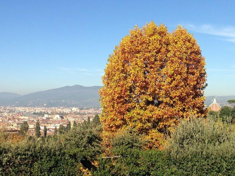View from Boboli Gardens