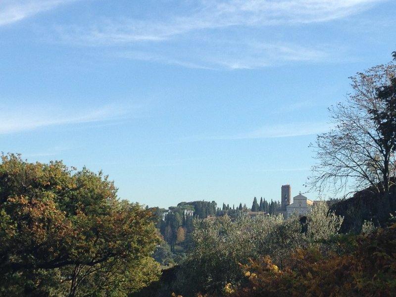 View from Bardini Garden to San Miniato