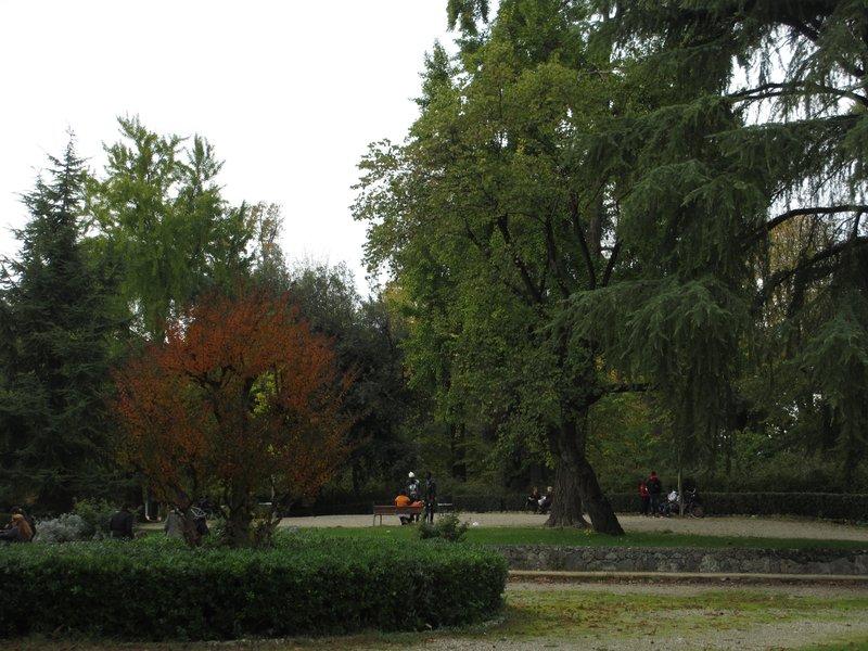 Parco della Cascine