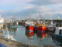 Fife Fishing Fleet