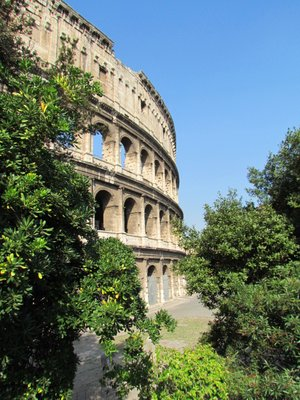 Colosseum_greenery.jpg