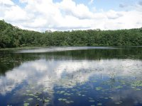 Summer at Moore State Park