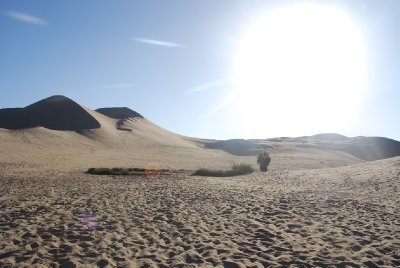 Huacachina - Desert sand dunes (4)