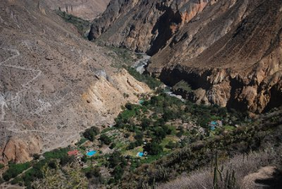 Colca Canyon - Looking down towards Oasis de Sangalle