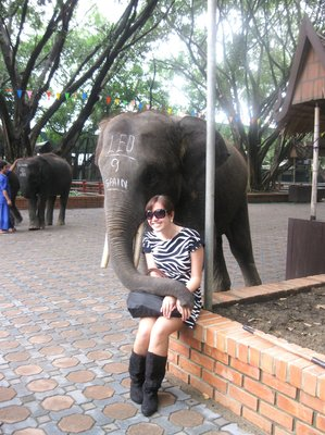 My Childhood Dream to be hugged by a real elephant  has come true :)