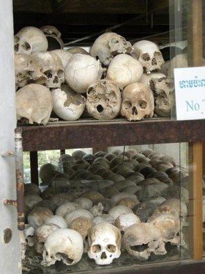 skullsshelves.jpg