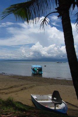 Het rustige strand.