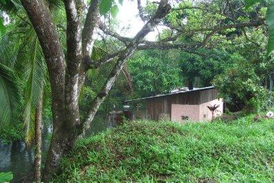 Een echt jungledorp.