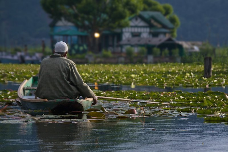 Fisherman on Dal Lake