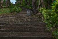 Final Steps...