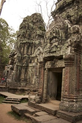 One last shot before we get to Ta Prohm's main attraction