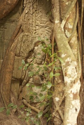 An Apsara dancer nearly hidden by trees at the north gate of Ta Prohm