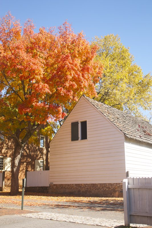 Autumn Colors in Old Salem