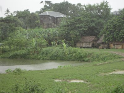 A typical landscape of bamboo huts and rice fields